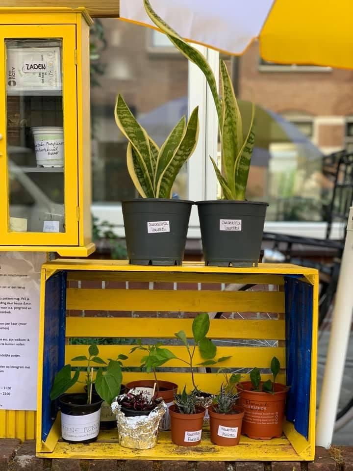 plantenbieb-emmen