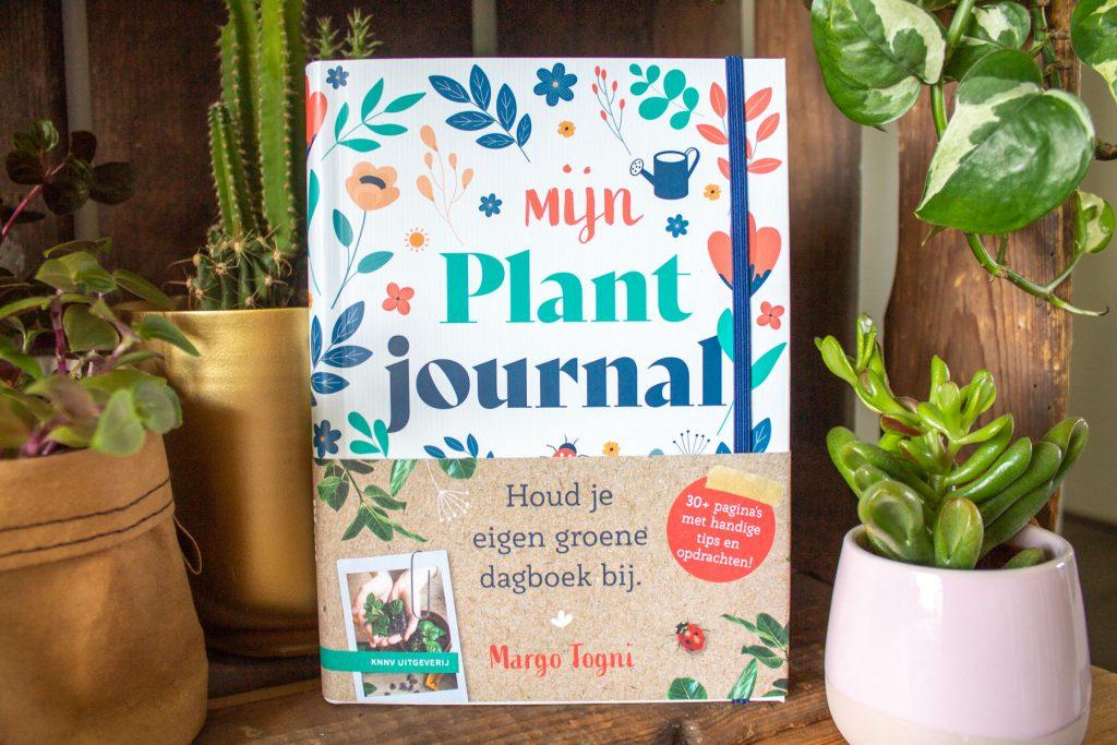 boeken-kamerplanten-stekken