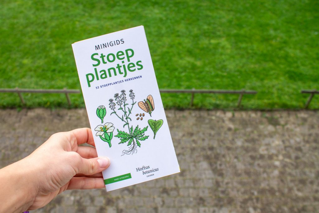 boeken-stoepplantjes-1-2