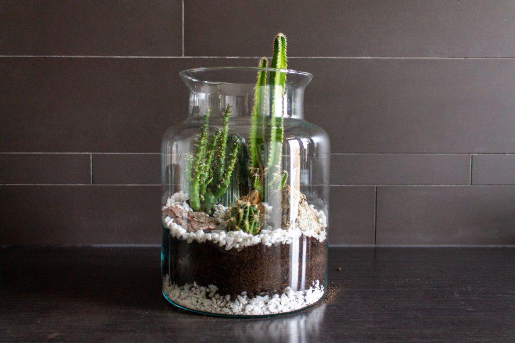 open-terrarium-maken