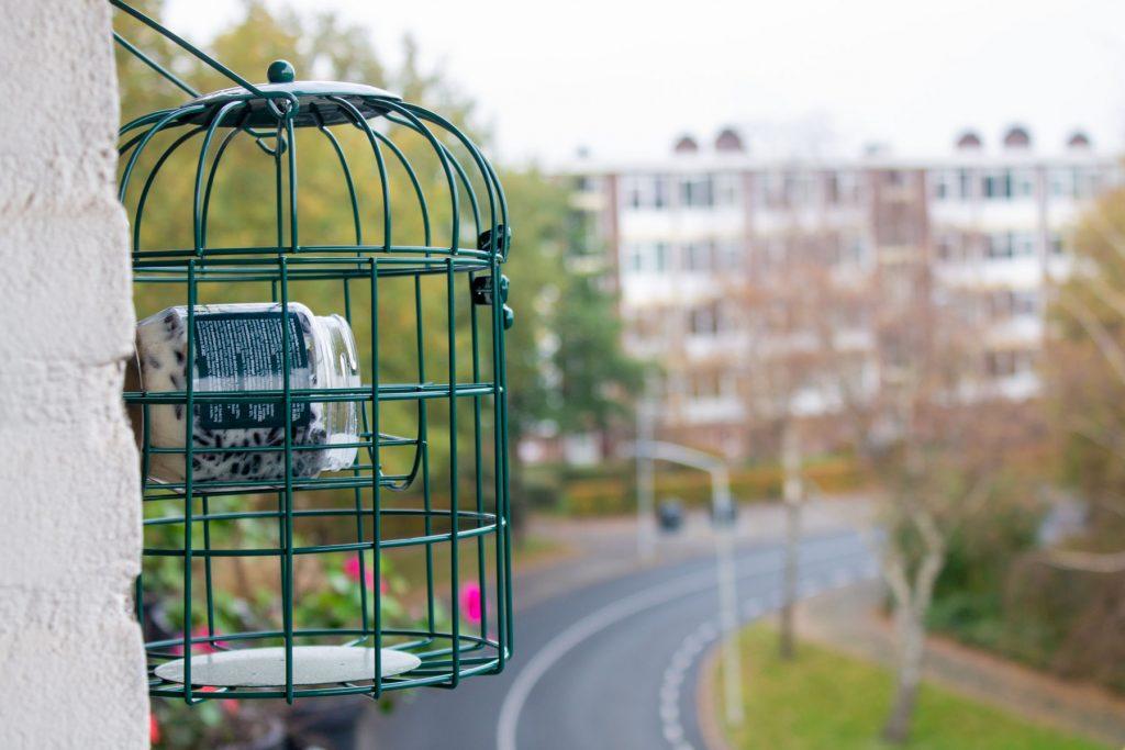 vogels-balkon-voederhuis