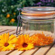 goudsbloemen-drogen
